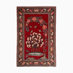 Middle East Floral Light Red Rug with Border & Garden of Paradise Pattern and Motif, 1940s