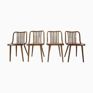 Esszimmerstühle von Antonín Šuman, Tschechoslowakei, 1960er, Set of 4