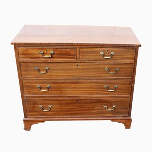 Square Front Mahogany Chest of Drawers, 1900s