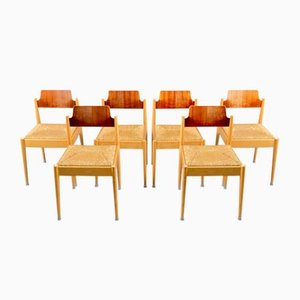 Vintage Model SE 19 Side Chairs by Egon Eiermann for Wilde+Spieth, 1950s, Set of 6