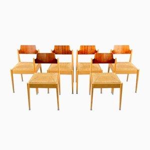 Vintage Modell SE 19 Beistellstühle von Egon Eiermann für Wilde + Spieth, 1950er, 6er Set