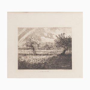 L'Arc en Ciel Radierung von RP Grouiller nach JF Millet, 19. Jahrhundert