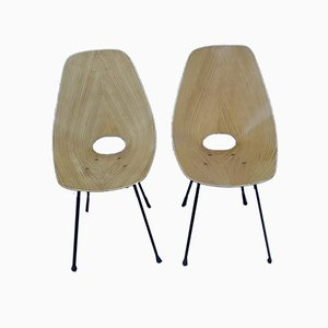 Mid-Century Dining Chairs by Vittorio Nobili for Fratelli Tagliabue, Set of 2