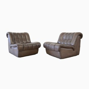 Model DS85 Lounge Chairs from de Sede, 1980s, Set of 2