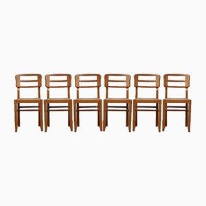 Sedie da pranzo Mid-Century moderniste di Pierre Cruège, Francia, anni '50, set di 6