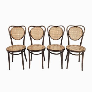 Mid-Century Bentwood & Cane Dining Chairs by Michael Thonet for ZPM Radomsko, 1960s, Set of 4