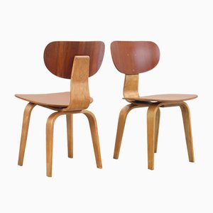 SB02 Chairs by Cees Braakman for Pastoe, 1950s