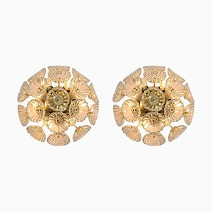 Starburst Sputnik Glass Flower Wall Lights, 1960s, Set of 2