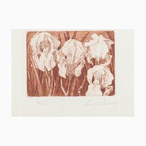 Luigi Rossetti, Gladiolus, 1975, Etching