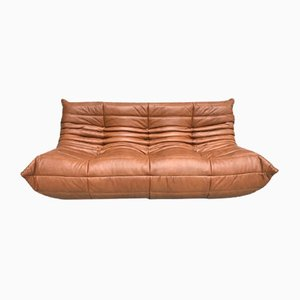 Vintage Sofa by Michel Ducaroy for Ligne Roset