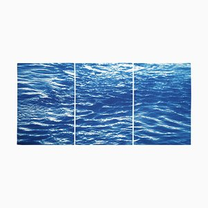 Colorado River Triptych of Refreshing River Flow, 2020, Cyanotype, Set of 3