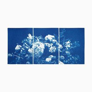 Trittico floreale di grandi fiori, 2020, Cyanotype