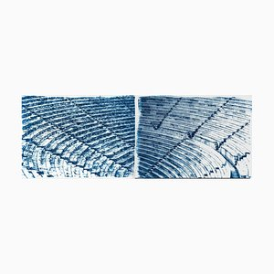 Diptych of Ancient Theatre, Cyanotype, 2020