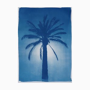 Cairo Citadel Palm, Cyanotype on Watercolor Paper, 2019