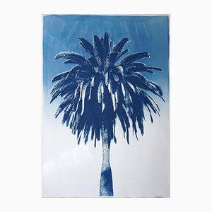 Marrakech Majorelle Palm, Cyanotype on Watercolor Paper, 2019