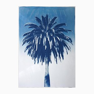 Marrakesch Majorelle Palm, Cyanotypie auf Aquarellpapier, 2019