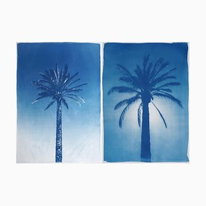 Duo of Egyptian Palms, Cyanotype on Paper, 2019