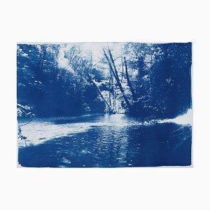 Scandinavian Enchanted Forest Cyanotypie auf Aquarellpapier, 2019