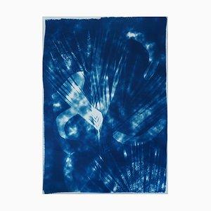 Nuances nuageuses abstraites botaniques, cyanotype sur papier aquarelle, 2020