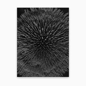 Magnetische Strahlung 99 (Medium) 2012