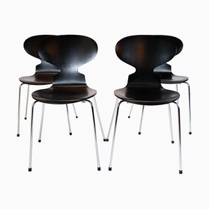 Black Ant Model 3101 Dining Chairs by Arne Jacobsen for Fritz Hansen, 2002, Set of 4