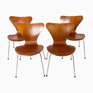 Teak Modell 3107 Seven Stühle von Arne Jacobsen für Fritz Hansen, 1960er, 4er Set