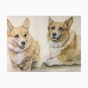 Welsh Corgi, 1994, Colored Pencil and Crayon