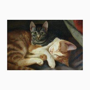 Carl WE Fink, gatti, olio su tela