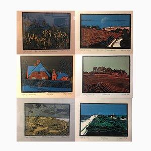 Linruts Tohmfor CJ, Sylt 1982, 12 Coloris avec Structures Métalliques Dorées