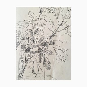 Karlheinz Kress, 1928-1979, Marburg Flowers in the Vase, Pencil