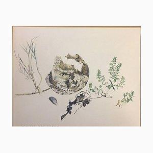Otto Wulk Otto, 1909-1982, Lübeck Skull on the Beach, Watercolor