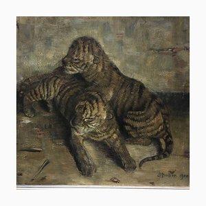 E. Duber, Tiger Babys, 1900
