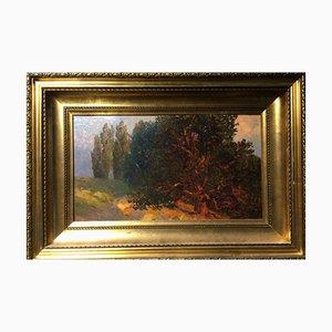 Gunter Meltzer, 1865, Lago Maggiore Cyklopeninseln, Óleo sobre cartón
