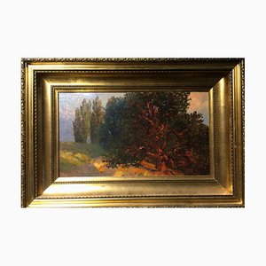 Gunter Meltzer, 1865, Zyklopeninseln am Lago Maggiore, Öl auf Karton