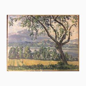 Paesaggio, olio su tela