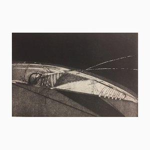 Diana Rattray, Femme et un insecte, 1982, Eau-forte