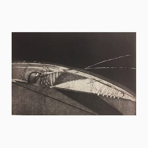 Diana Rattray, Woman and an Insect, 1982, Etching