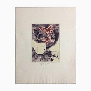 Daniela Havlickova, 1946 - 1999, Krabice S Motyly Butterflies Red, Lithograph