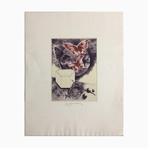 Lithographie Daniela Havlickova, 1946 - 1999, Krabice S Motyly Butterflies Red