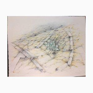 Margot Middelhauve, Développement, 1979, Pencil and Crayon