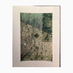 Reinhard Zanella, Composizione in marrone e verde, 2000, Carta fotografica