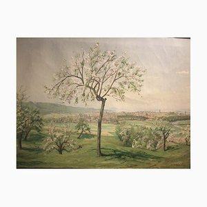 Niederzwehren, 1953, Öl auf Leinwand