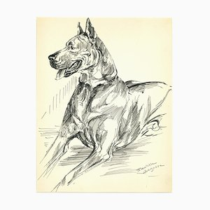 Marie-Paulette Lagosse, Dog, Ink Drawing, Late 20th Century