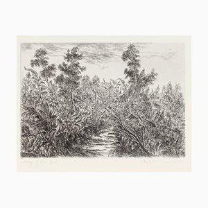 Paulette Humbert, Landscape, Etching, 20th Century