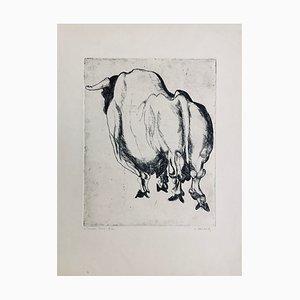 Claude Weisbuch, Le Taureau Blanc, 1950, Pointe, sèche Originalsignatur