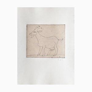 François-Xavier LaLanne, the Goat, 2004, Engraving