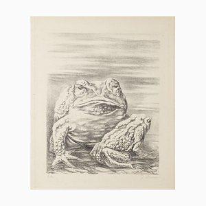Fabrizio Clerici, die Frösche, 20. Jahrhundert, Lithographie