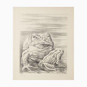 Fabrizio Clerici, the Frogs, 20th Century, Lithograph