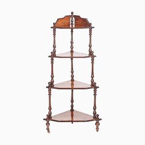 Antikes viktorianisches 4-stufiges Eckregal aus Wurzel- & Nussholz mit Intarsien
