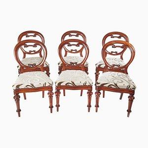 Antike viktorianische Balloon Back Chairs aus Mahagoni, 6er Set